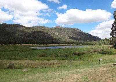 wetland-at-rear-of-motel